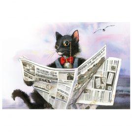 Открытка «Кот»